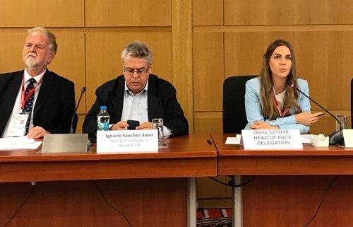 La OSCE critica el proceso de las elecciones en Turquía