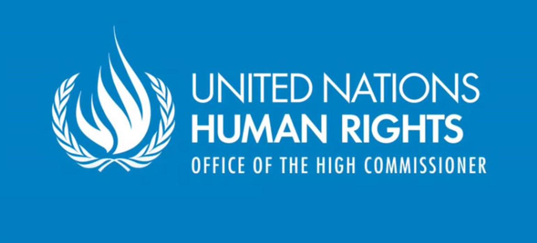 La ONU pide a Turquía que libere a dos detenidos vinculados al movimiento Gülen